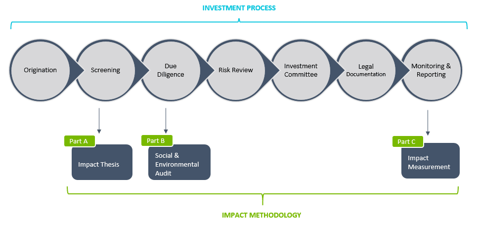 Investment Process